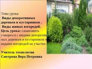 презентация на тему разнообразие декоративных кустарников города